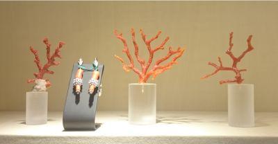 koral-sardinien