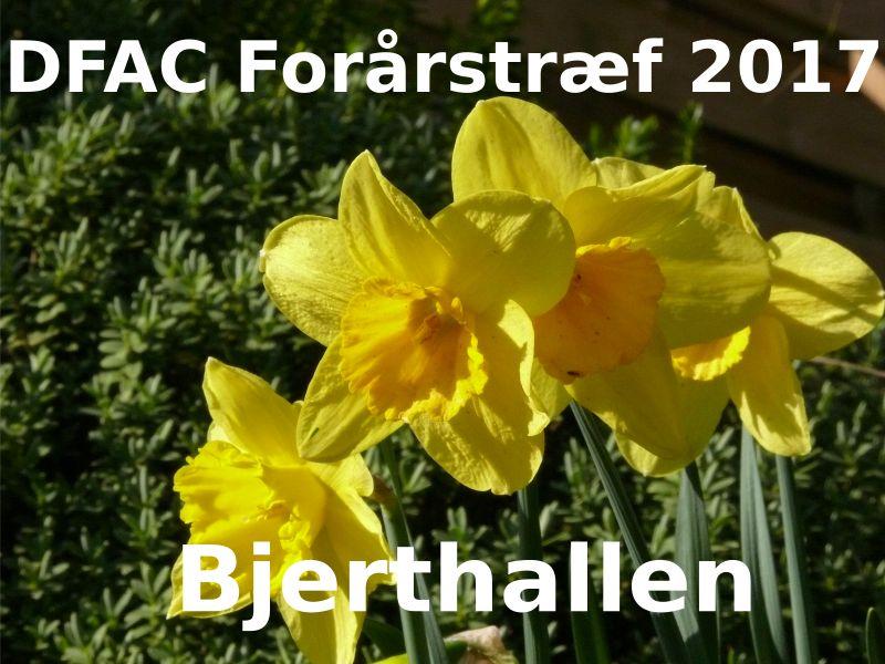 Indbydelse til DFAC forårstræf/forårsmøde 2017