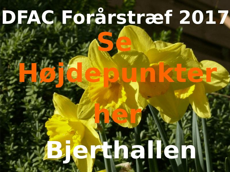 Forårstræf 2017 i Bjert Hallen en stor succes!