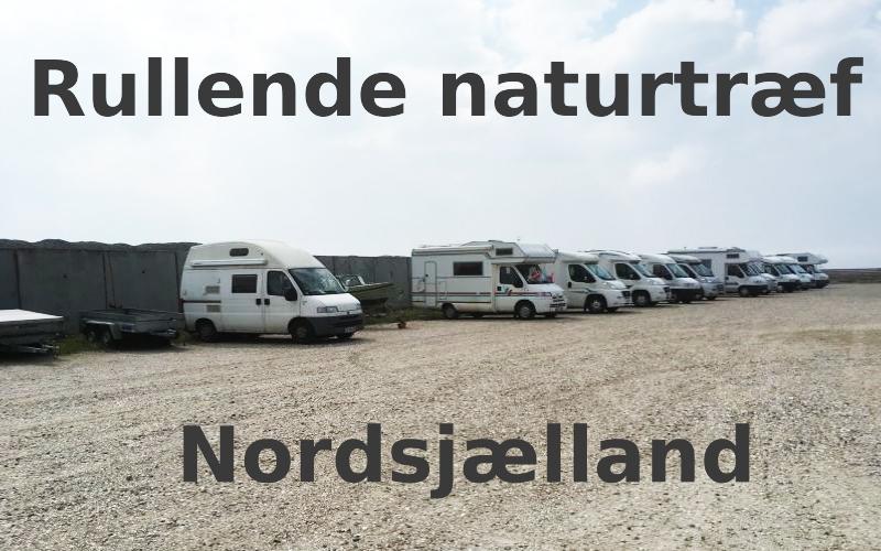 Rullende naturtræf i Nordsjælland