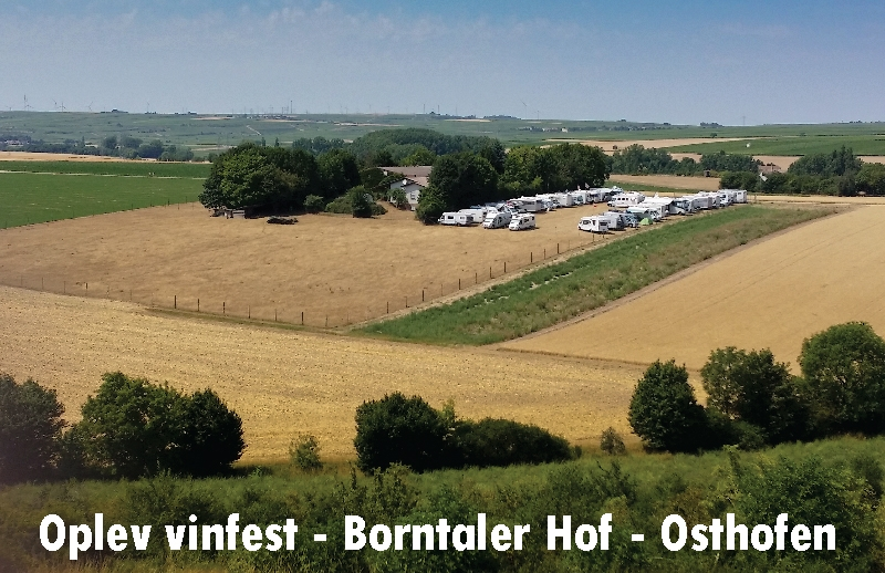 Invitation – Vinfest Osthofen